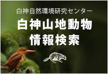 動物情報検索